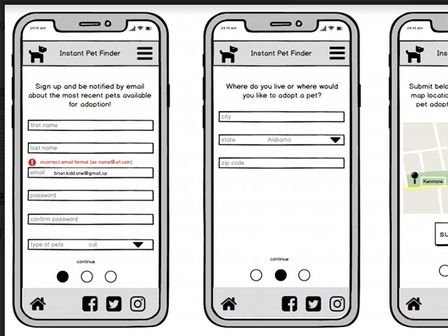 pet adoption wireframe